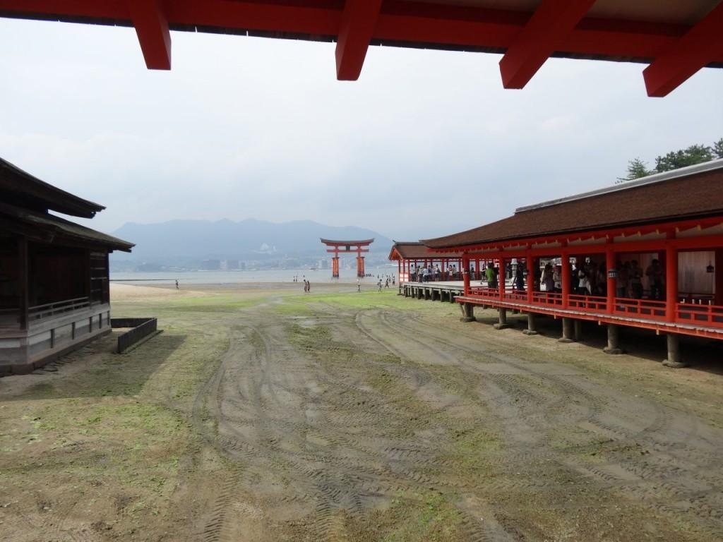 厳島の画像 p1_32